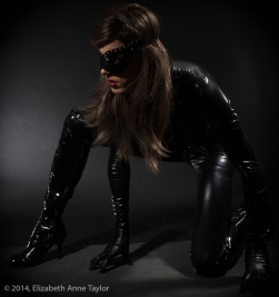 Catwoman is on the prowl